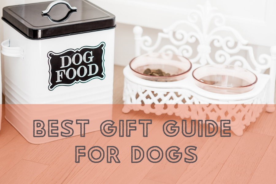 Best Gift Guide for Dogs